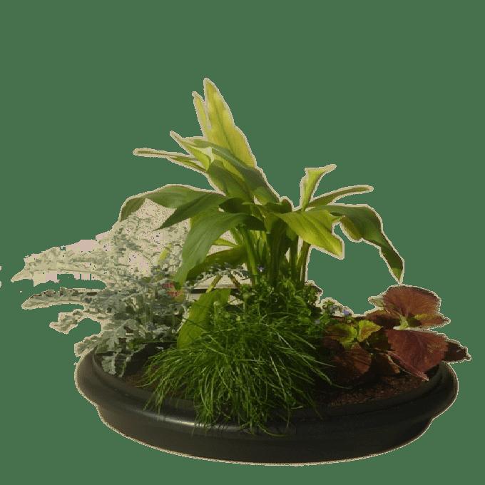 Plantenring voor ronde wormenbak