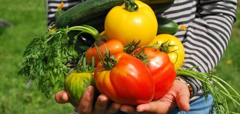 Kinderarmen vol groenten uit eigen moestuin