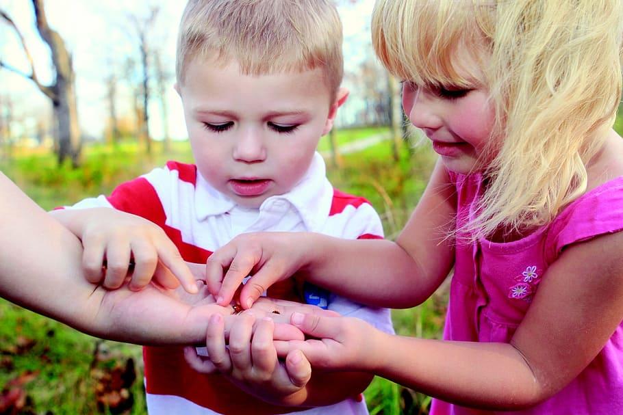 In de zomer kunnen kinderen insecten zoeken