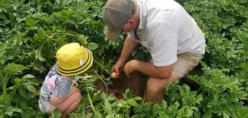 Opa's en oma's kunnen kleinkinderen leren moestuinieren
