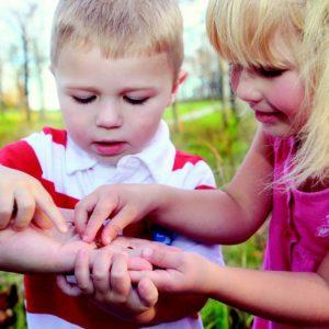 zomercursus moestuinieren voor kleine kinderen